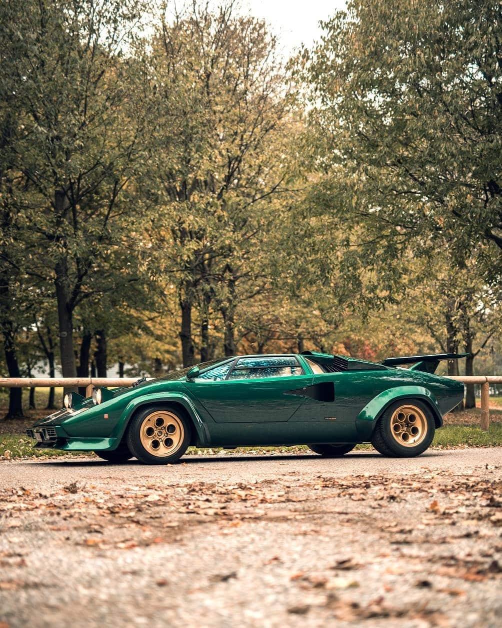 Lamborghini Countach @davidclementephotography - Image 4